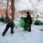 HC Juletræer 3
